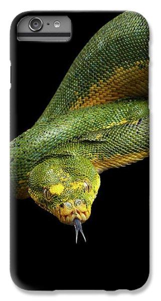 Green Tree Python. Morelia Viridis. Isolated Black Background IPhone 6s Plus Case by Sergey Taran