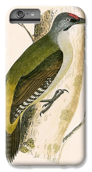 Grey Woodpecker IPhone 6s Plus Case by English School