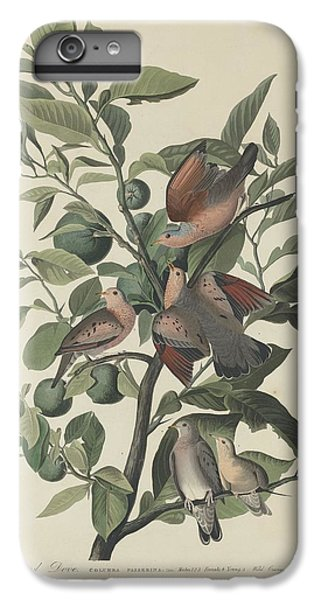 Ground Dove IPhone 6s Plus Case by Rob Dreyer