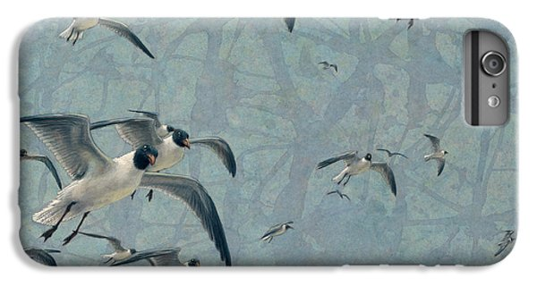 Seagull iPhone 6s Plus Case - Gulls by James W Johnson