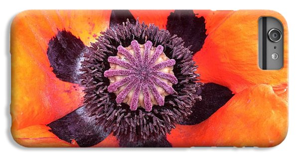 iPhone 6s Plus Case - Heart Of A Poppy by Orphelia Aristal