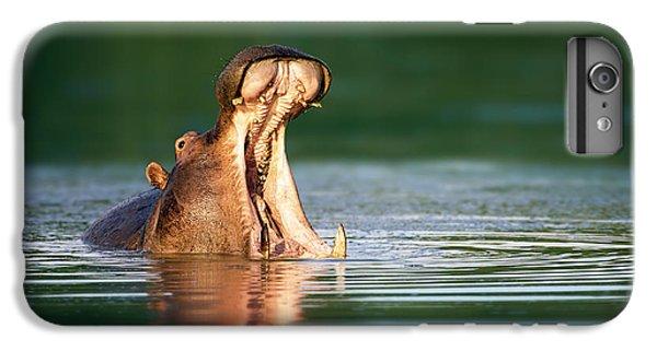 Hippopotamus IPhone 6s Plus Case