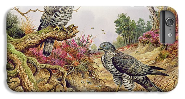 Honey Buzzards IPhone 6s Plus Case by Carl Donner