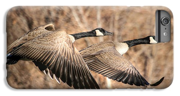 Goose iPhone 6s Plus Case - I'm Right Behind Ya by Donna Kennedy