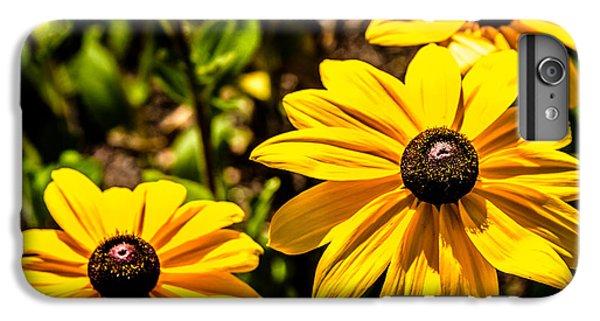 Indian Summer Gloriosa Daisy IPhone 6s Plus Case