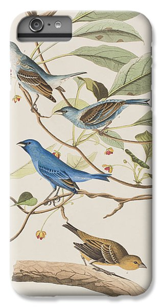 Indigo Bird IPhone 6s Plus Case