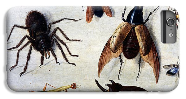 Insects, 1660 IPhone 6s Plus Case