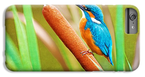 Kingfisher iPhone 6s Plus Case - Kingfisher by Laura D Young