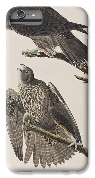 Labrador Falcon IPhone 6s Plus Case