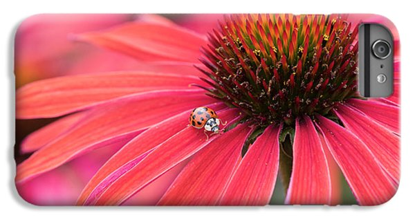 Hot iPhone 6s Plus Case - Ladybird And Echinacea by Tim Gainey