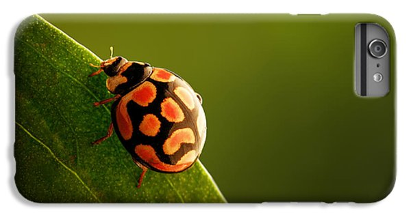 Beetle iPhone 6s Plus Case - Ladybug  On Green Leaf by Johan Swanepoel