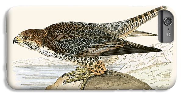 Lanner Falcon IPhone 6s Plus Case by English School