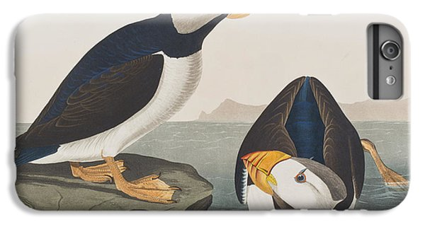 Puffin iPhone 6s Plus Case - Large Billed Puffin by John James Audubon