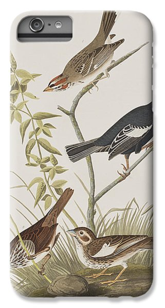 Lark Finch Prairie Finch Brown Song Sparrow IPhone 6s Plus Case