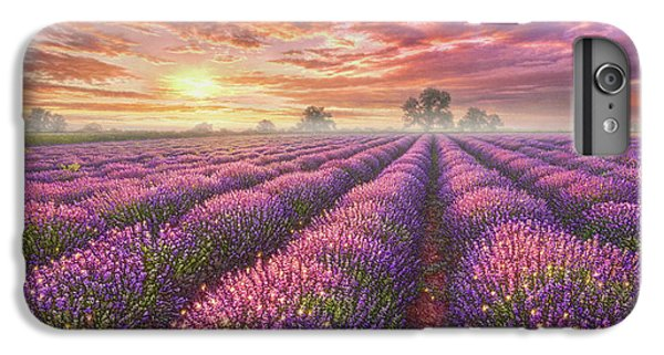 Mice iPhone 6s Plus Case - Lavender Field by Phil Jaeger