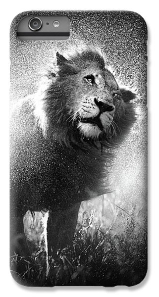 Lion Shaking Off Water IPhone 6s Plus Case