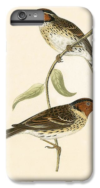 Little Bunting IPhone 6s Plus Case by English School
