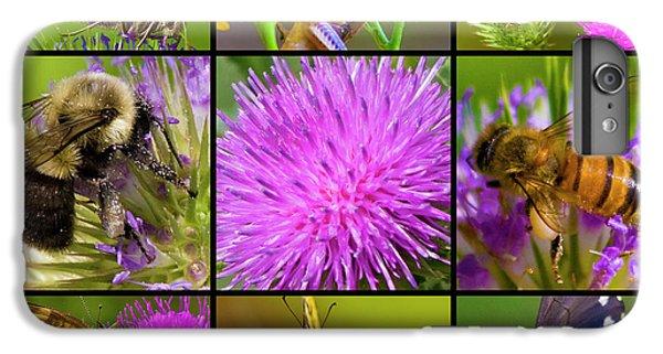 Grasshopper iPhone 6s Plus Case - Little Guys  by Betsy Knapp