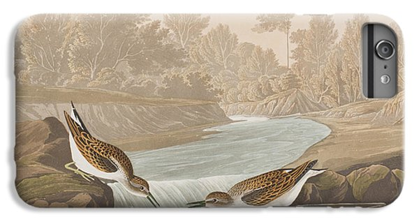 Little Sandpiper IPhone 6s Plus Case by John James Audubon