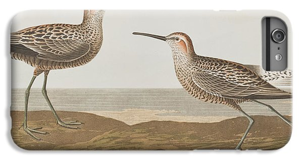 Long-legged Sandpiper IPhone 6s Plus Case
