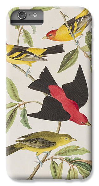 Scarlet iPhone 6s Plus Case - Louisiana Tanager Or Scarlet Tanager  by John James Audubon