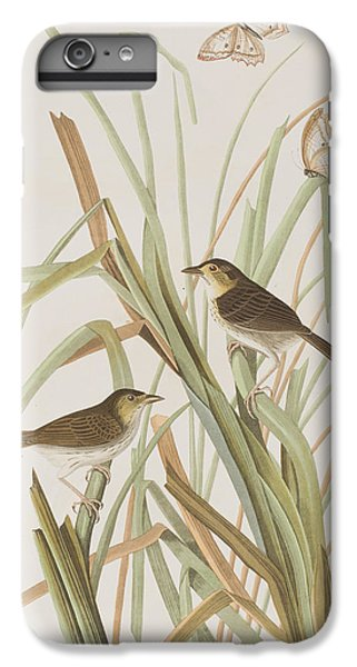 Macgillivray's Finch  IPhone 6s Plus Case