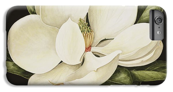 Tulip iPhone 6s Plus Case - Magnolia Grandiflora by Jenny Barron