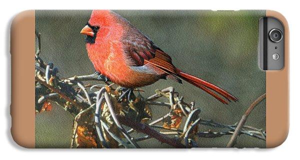 Male Cardinal IPhone 6s Plus Case by Ken Everett