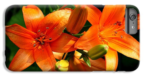 Floral iPhone 6s Plus Case - Marmalade Lilies by David Dunham