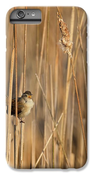 Marsh Wren IPhone 6s Plus Case by Bill Wakeley