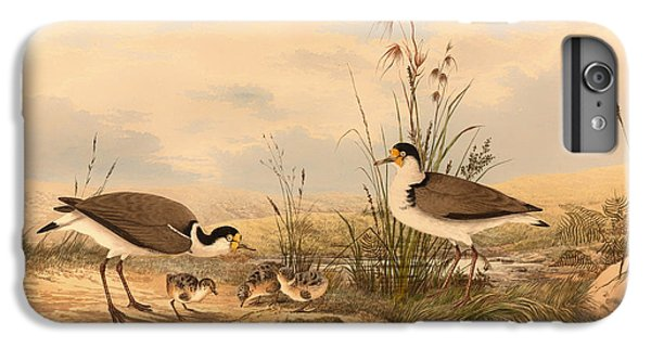 Lapwing iPhone 6s Plus Case - Masked Lapwing by Mountain Dreams
