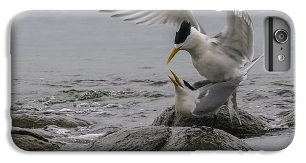 IPhone 6s Plus Case featuring the photograph Mating Pair 2 by Werner Padarin