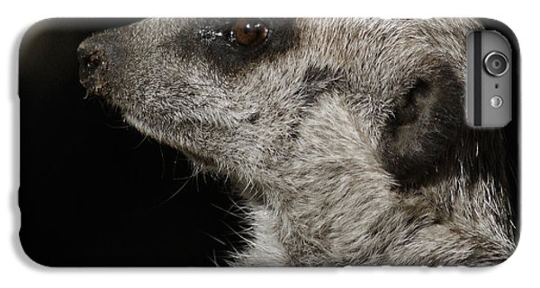 Meerkat Profile IPhone 6s Plus Case by Ernie Echols