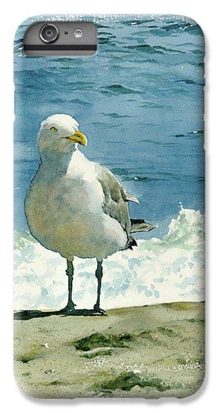 Beach iPhone 6s Plus Case - Montauk Gull by Tom Hedderich
