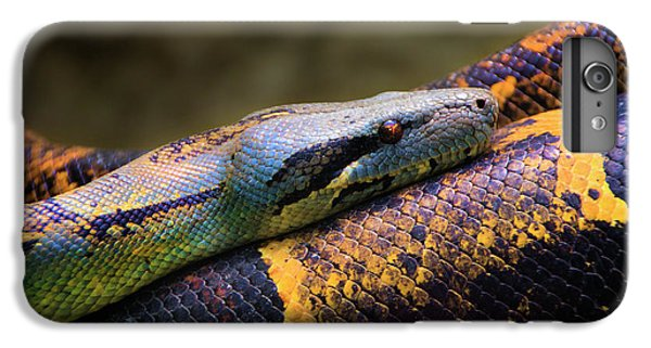 Don't Wear This Boa IPhone 6s Plus Case by Al Bourassa