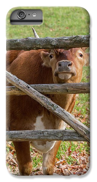 IPhone 6s Plus Case featuring the photograph Moo by Bill Wakeley