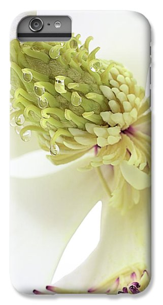 IPhone 6s Plus Case featuring the photograph Morning Dew On The Magnolia by JC Findley
