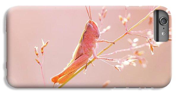 Grasshopper iPhone 6s Plus Case - Mr Pink - Pink Grassshopper by Roeselien Raimond