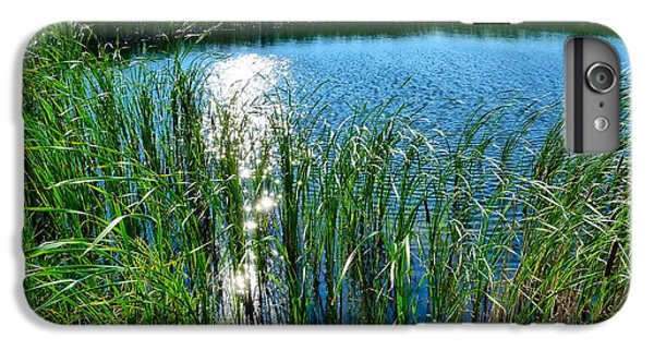 Northern Ontario 2 IPhone 6s Plus Case by Claire Bull