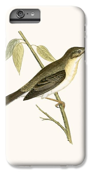 Olivaceous Warbler IPhone 6s Plus Case by English School