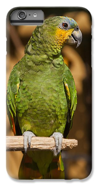 Macaw iPhone 6s Plus Case - Orange-winged Amazon Parrot by Adam Romanowicz