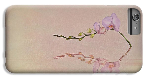 Orchid Blooms And Buds IPhone 6s Plus Case by Tom Mc Nemar