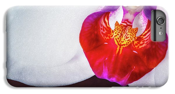 Orchid iPhone 6s Plus Case - Orchid Up Close by Tom Mc Nemar