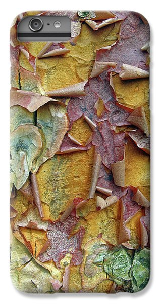 Paperbark Maple Tree IPhone 6s Plus Case by Jessica Jenney