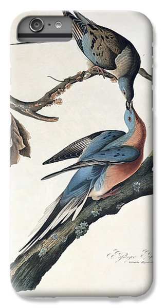 Pigeon iPhone 6s Plus Case - Passenger Pigeon by John James Audubon