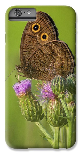 IPhone 6s Plus Case featuring the photograph Pauper's Throne by Bill Pevlor
