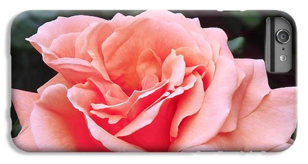 Peach Rose IPhone 6s Plus Case