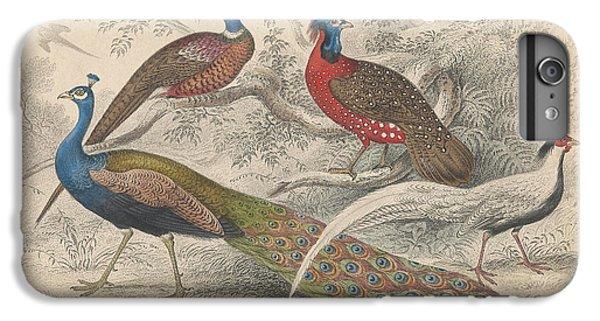 Peacocks IPhone 6s Plus Case