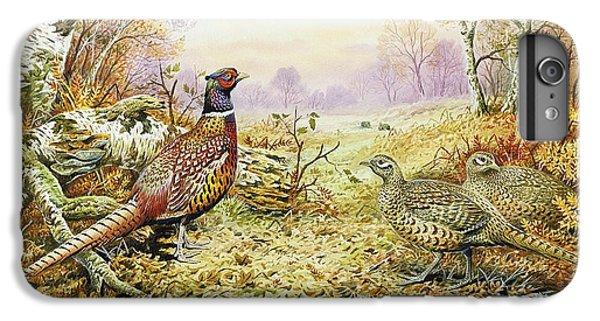 Pheasants In Woodland IPhone 6s Plus Case