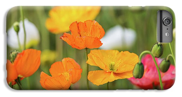 IPhone 6s Plus Case featuring the photograph  Poppies 1 by Werner Padarin